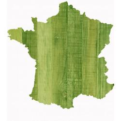 CARTE DE FRANCE 01 BIS