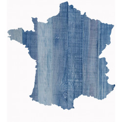 CARTE DE FRANCE 01